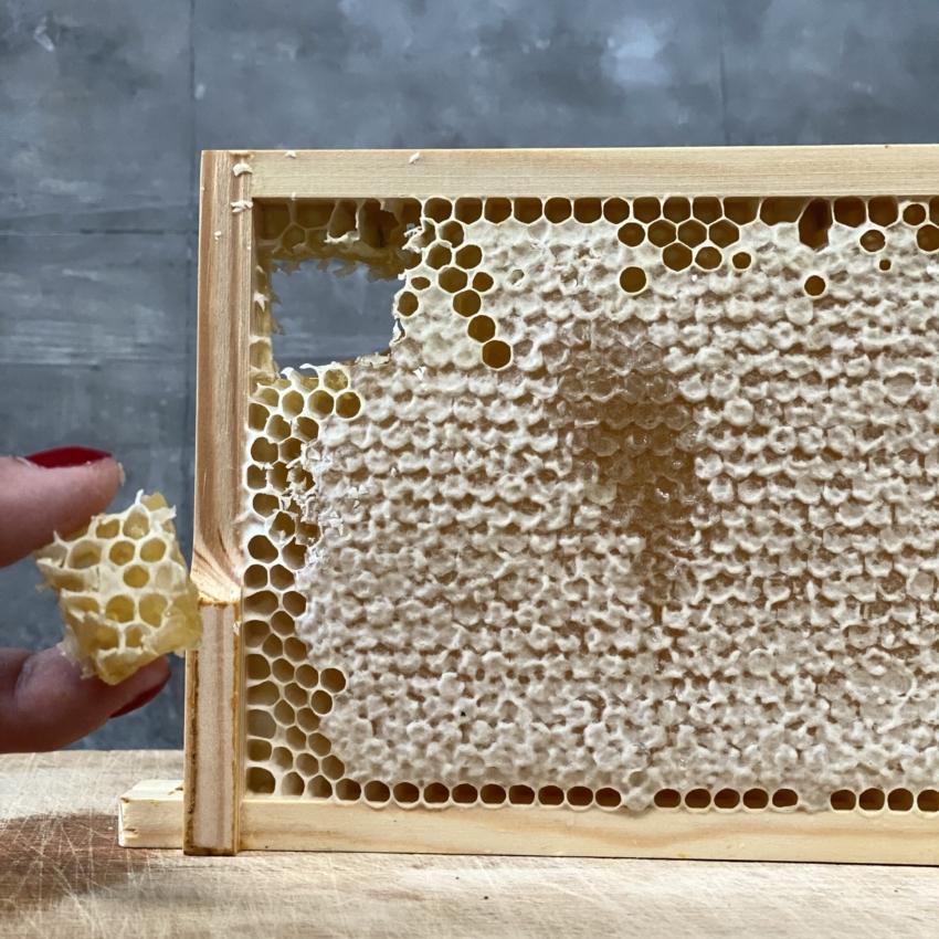Honning tavle